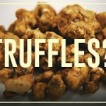 What the F***ungi are truffles ? Differences between